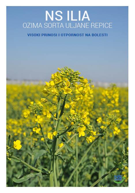 katalog NS hrvatski s kor 165 X 23520
