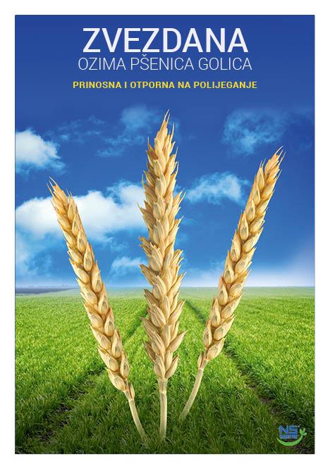 katalog NS hrvatski s kor 165 X 2354